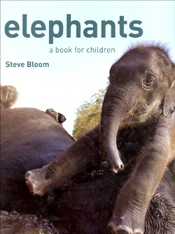 Children will love this beautiful, elephant fun fact book