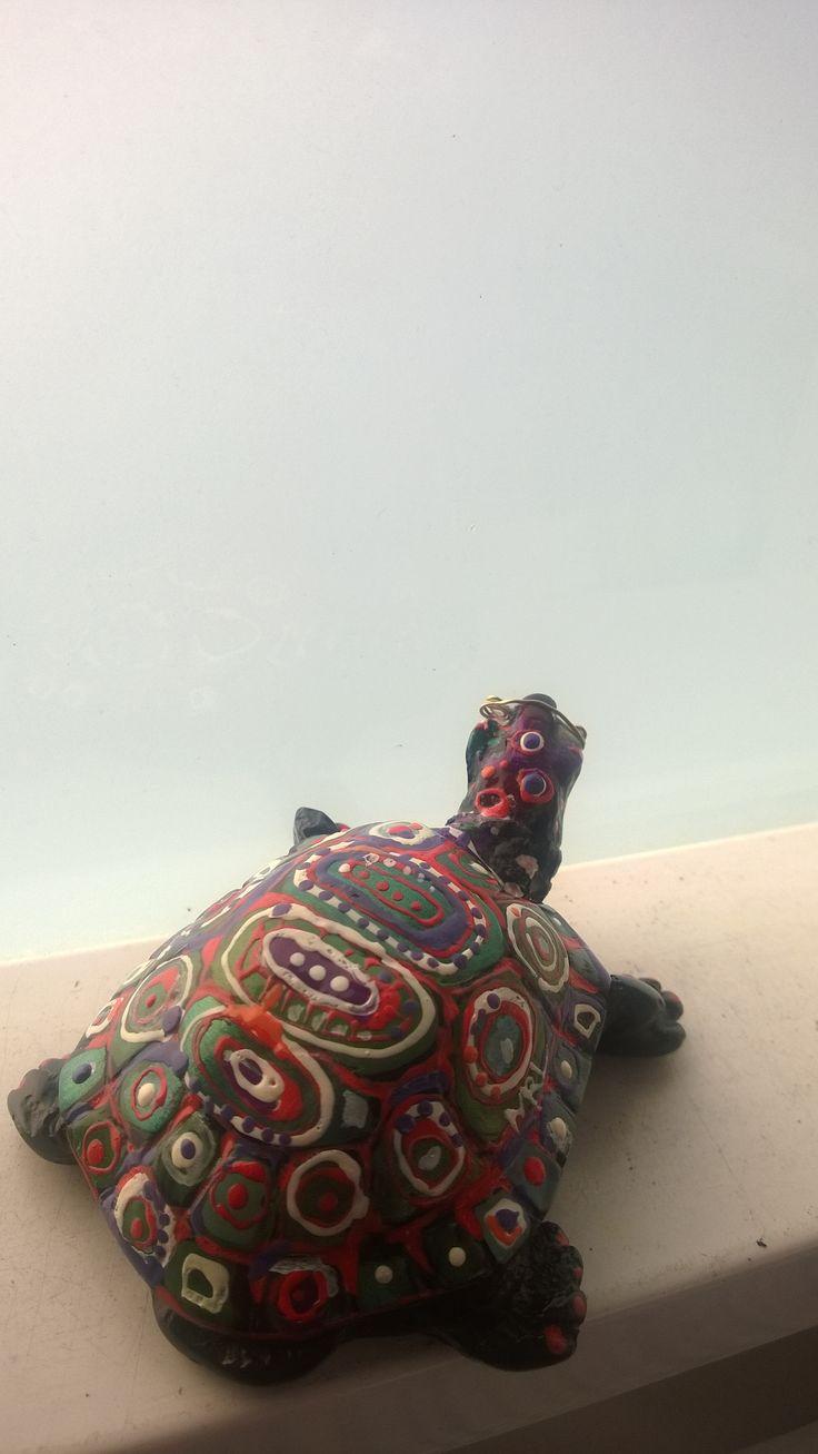 Venlan konna turtle
