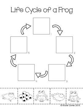 frog life cycle cut and paste worksheet for my classroom life cycles cut paste worksheets. Black Bedroom Furniture Sets. Home Design Ideas