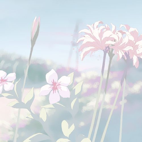 flowers, anime, and nature image