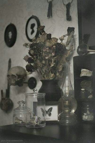 Best 25 Macabre Decor Ideas On Pinterest Skull Decor