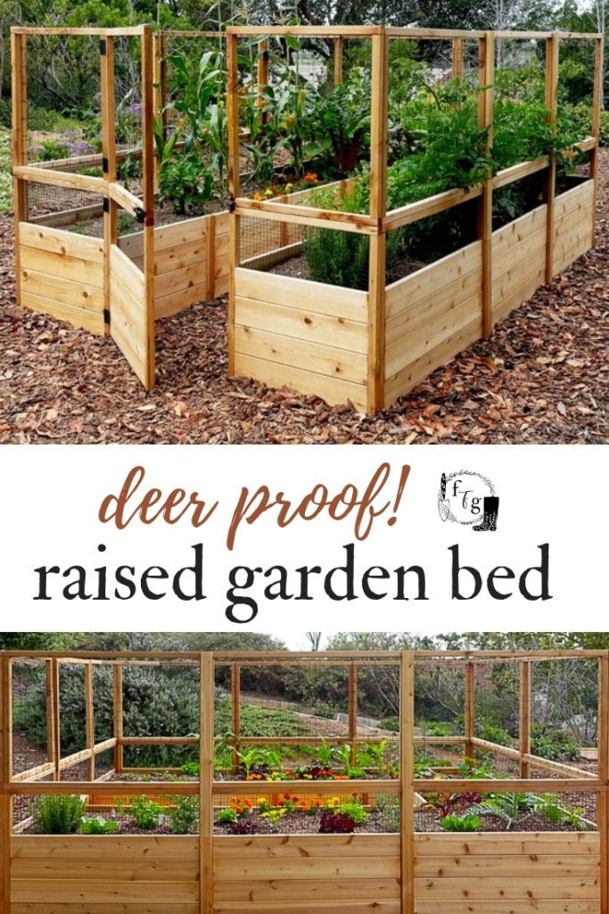 Stunning Vegetable Garden Ideas Family Food Garden Vegetable Garden Beds Home Vegetable Garden Vegetable Garden Design