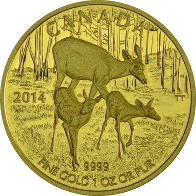200 DOLLAR GOLD DER WEISSWEDELHIRSCH - MUTTER & KITZ PP
