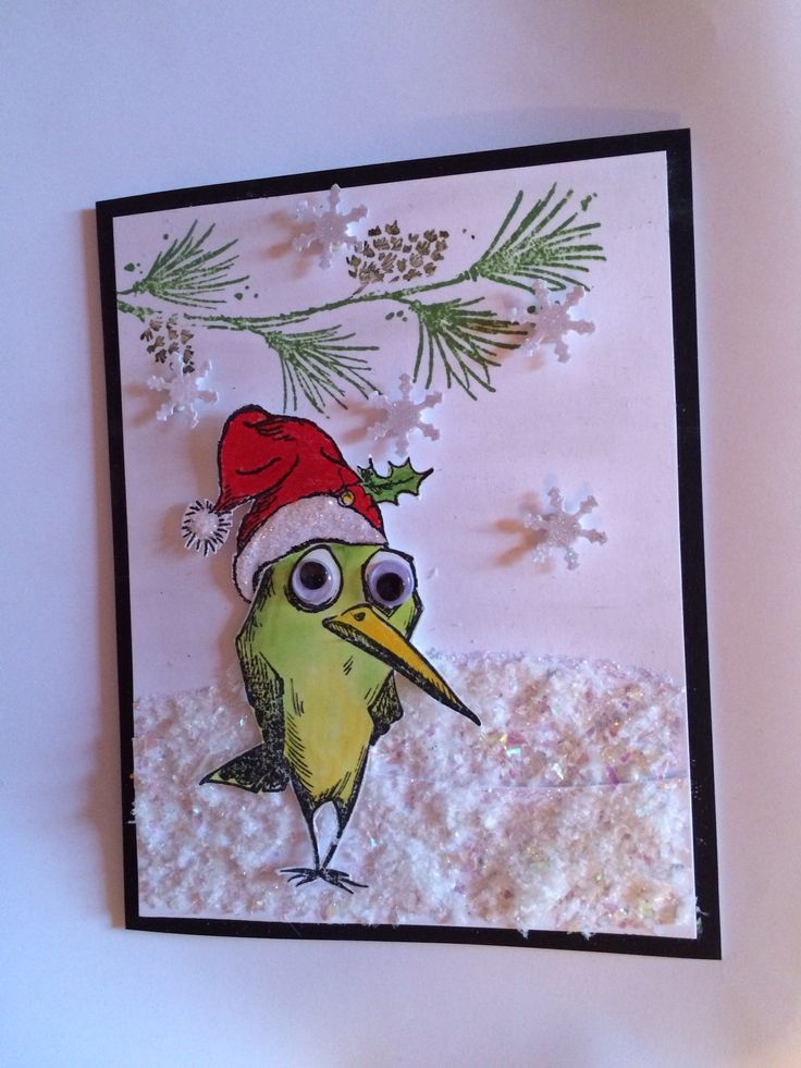 Bird Crazy Christmas - Scrapbook.com