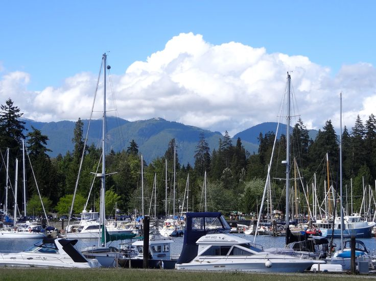Vancouver Harbour near the hotel hosting the 2016 BWA