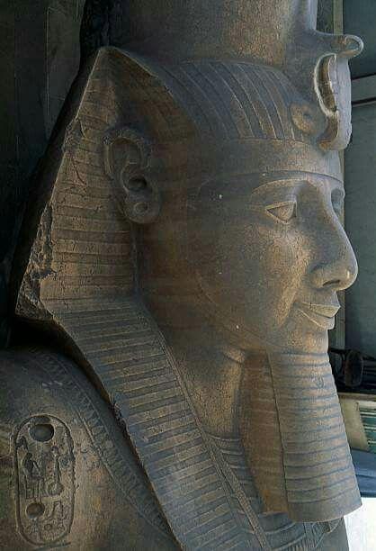 Colossus of Ramesses II limestone statue ~ Memphis Egypt.