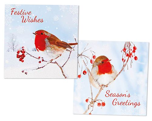 Traditional Robin Christmas Cards £3  Pack of 12 Christmas cards, complete with envelopes. 2 designs, 6 of each design. Each card measures H14cm x W14cm. Message inside 'Merry Christmas'.  Code: 907561  KLife Kleeneze