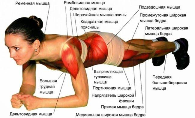 Всего одно занятие, которое поднимает тонус всех мышц и избавляет от лишнего веса.