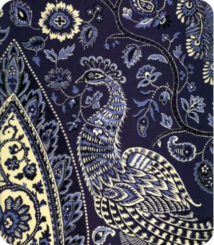 Indian empress in indigo paisley print pattern