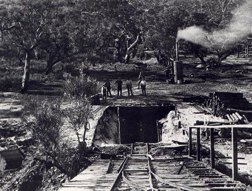 Collie Coal Mine, The First Shaft, c. 1880s.Google Image, Coal Minerals, Export Crop, Grew Dramatic, Indigenous Workers, Mine Sector, Collies Coal, European Merchant, European Consumer