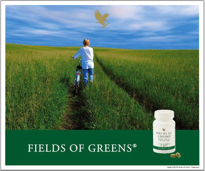 """With today's busy lifestyles and the convenience of fast food, we all too often neglect eating fresh, green foods. Forever Living Products® provides a simple solution to """"convenience eating"""" in Fields of Greens®. One glance at its ingredient list reveals a cornucopia of green foods for your body. FG combines young barley grass, wheat grass, alfalfa and added cayenne pepper (to help maintain healthy circulation and digestion). We have added honey to promore energy. www.aloeme.myflpbiz.com"""