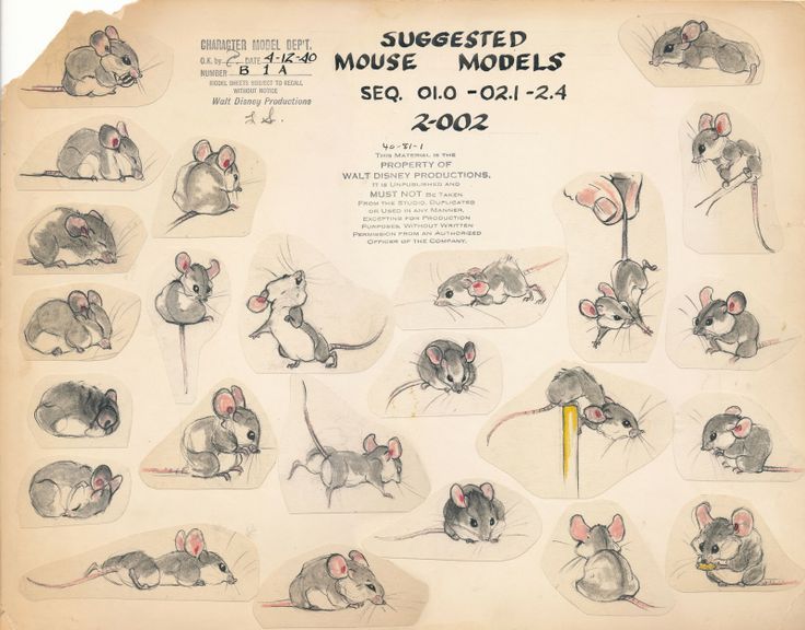 model studies of the tiny mouse (featured literally for 20 seconds) in Bambi