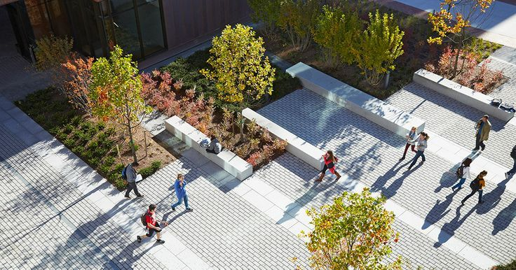 campus lanscaping / UNIVERSITY OF CONNECTICUT NEW SOCIAL SCIENCES