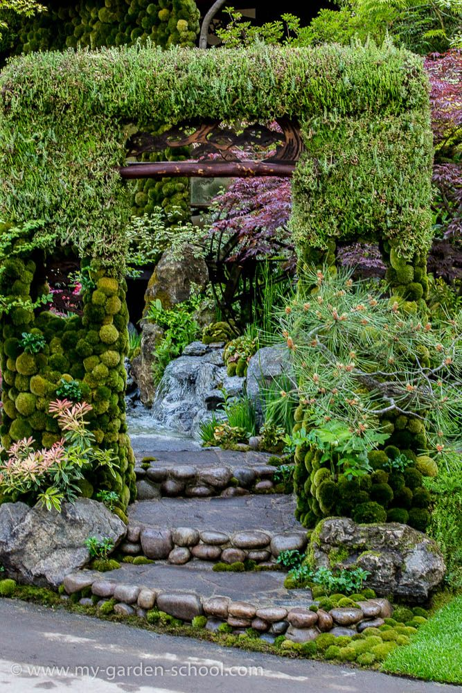 25 best Chelsea Flower Show Ideas images on Pinterest | Chelsea ...