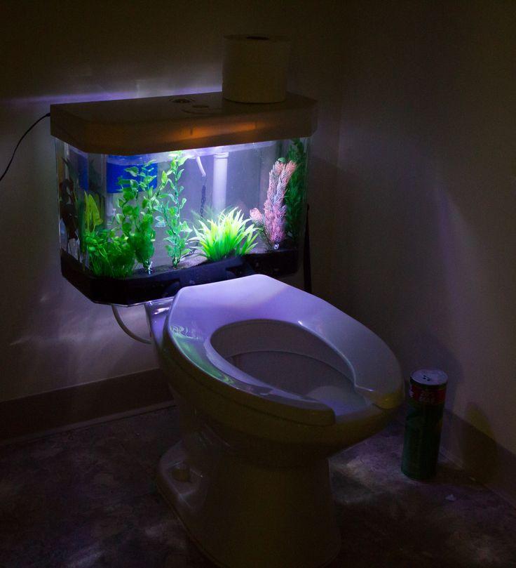 Pin By Darkwater Aquatics On Darkwater Aquatics Aquarium Fish Tank Bathroom