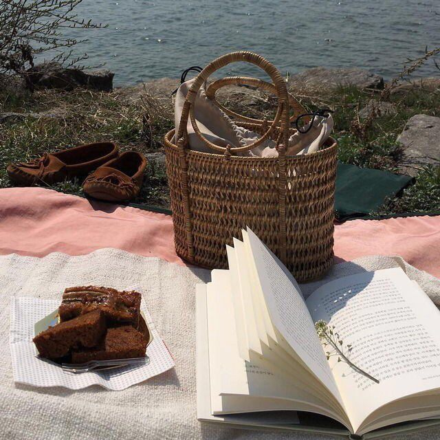 Romantic picnic by the sea with book tumblr moodboard