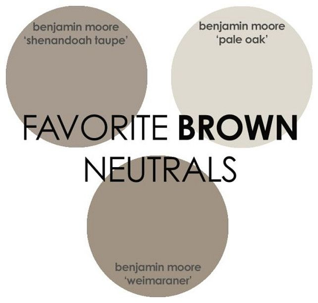 Brown Paint Color. Benjamin Moore Brown Paint Color. Shenandoah Taupe Benjamin Moore. Pale Oak Benjamin Moore. Weimaraner Benjamin Moore. Via Rhiannons Interiors.
