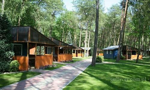 Międzywodzie. Ośrodek kempingowy Zacisze - domki letniskowe położone w nadmorskim lesie sosnowym: www.gulliver.com.pl/zacisze/ #miedzywodzie