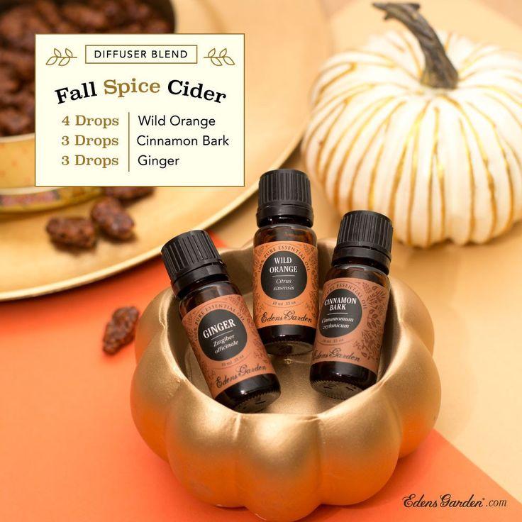 Fall Spice Cider Diffuser Blend Recipe – Edens Garden