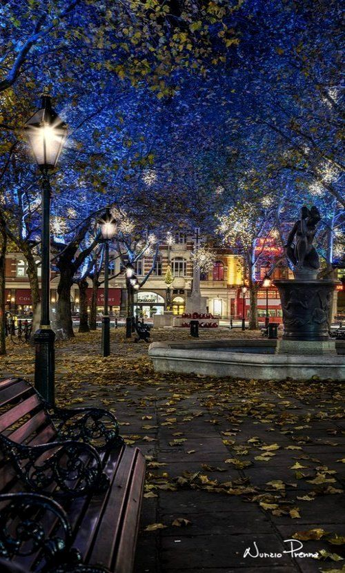 Christmas in Sloane Square, London, England