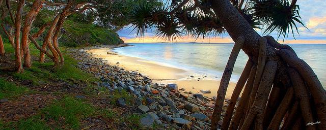 Tea Tree Bay,Noosa National Park, Australia
