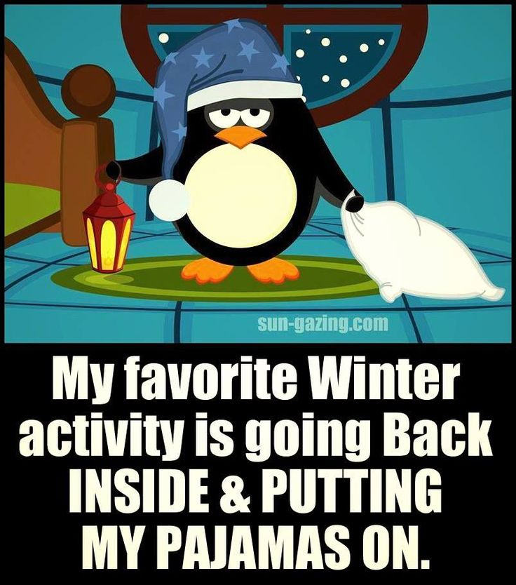 Best 25+ Funny Winter Quotes Ideas On Pinterest