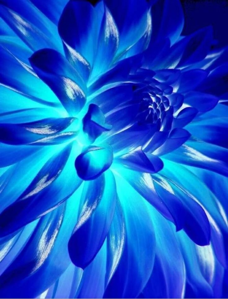 картинка голубого оттенка