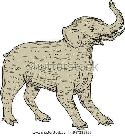 Drawing sketch style illustration of a Baku, a Chinese and Japanese Folklore tapir-like creature with elephantine tusks and trunk and with striped fur viewed side set on isolated white background.   #baku #drawing #illustration