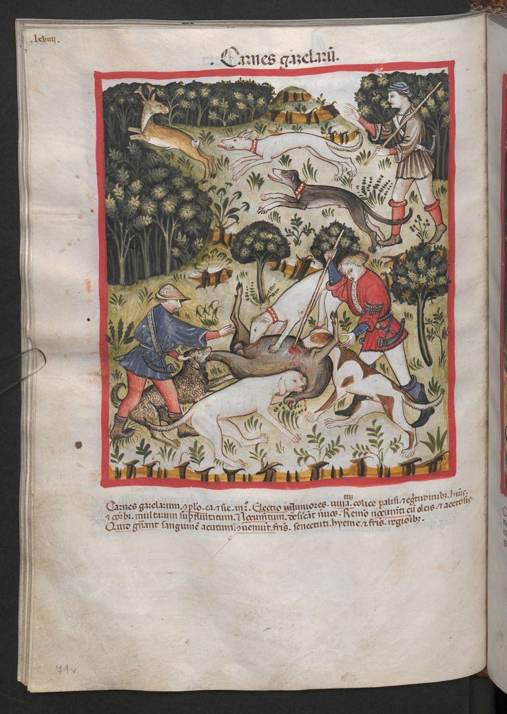 Folio 71v (page 146). Tacuinum sanitatis, Codex Vindobonensis, series nova 2644. Northern Italy, probably Verona, 1380-1399.