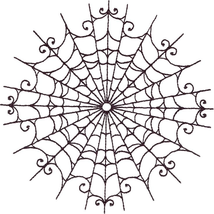 Black Spider Web Circle #HG545_48