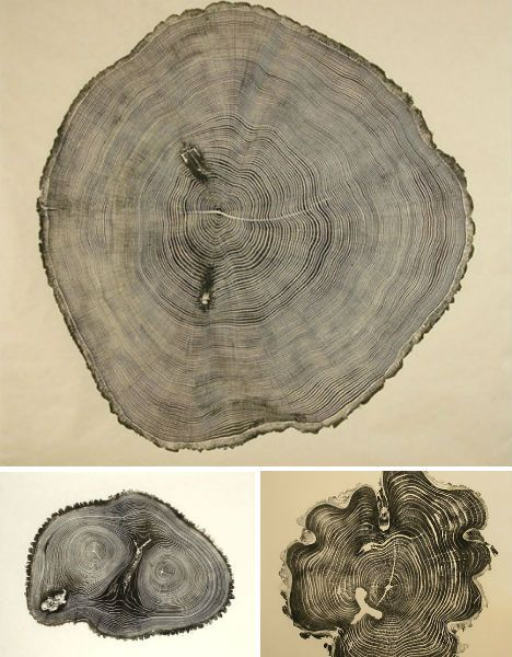 Artist Bryan Nash Gill captures prints of trees that are as unique as human fingerprints. Selecting visually interesting pieces from lumber yards and other sources, Gill rolls ink onto the cut surfaces of the trees and then lays down sheets of handmade washi paper. To be sure that as much fine detail as possible is transferred to the paper, Gill laboriously rubs the surface with his fingertips and fingernails.