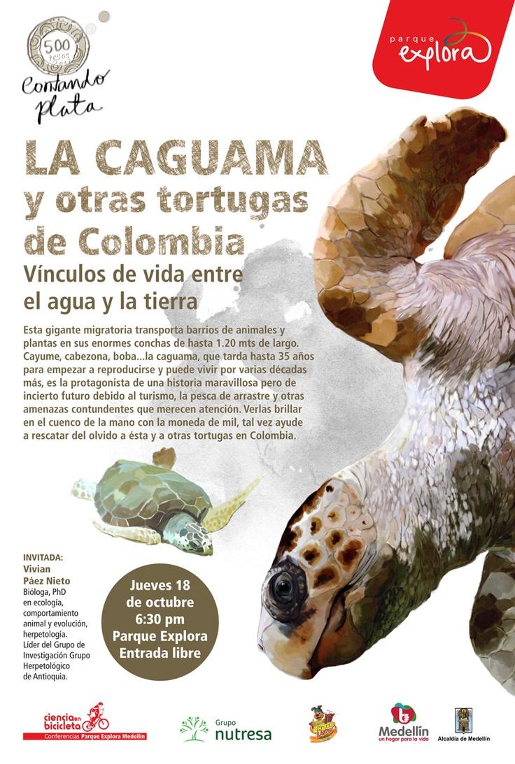 【  LA CAGUAMA Y OTRAS TORTUGAS DE COLOMBIA  】  Ciclo Contanto Plata / Parque Explora. Ilustración: María Luisa Isaza.