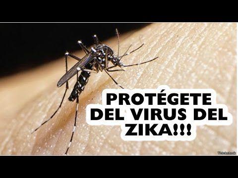 PROTÉGETE DEL VIRUS DEL ZIKA - YouTube
