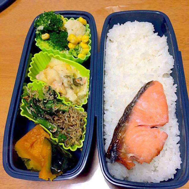 シャケ かぼちゃの煮物 小松菜とジャコのふりかけ ブロッコリーとカリフラワーのコーンサラダ 白菜とネギのグラタン - 17件のもぐもぐ - シャケ弁当 by kimurasawaOyK