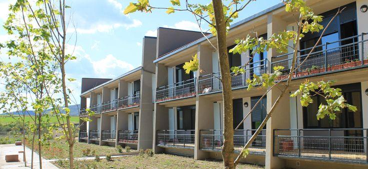 Cada bloque su patio con su tipo de arbol específico | #Trabensol Senior #Cohousing