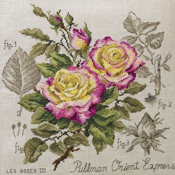 Cross stitch - flowers: botanicals - Rosa - rose Pullman orient express (free pattern with chart)