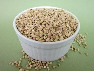 Still More Breakfast Grains To Go Certified Organic Non-GMO Sprouting Seeds 10 pound (price includes shipping)