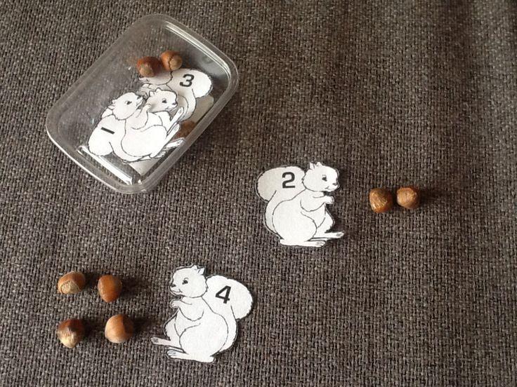 Tellen met beukennootjes