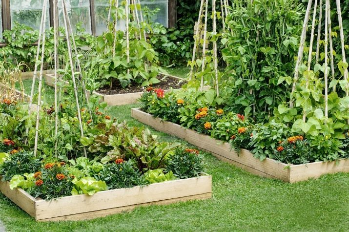 Garden Designs Ideas 2018 : With little more than a few boards a shovel and some… – Decors Ideas: Outdoor