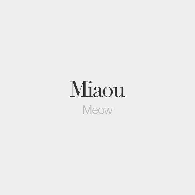 Miaou | Meow | /mja.u/