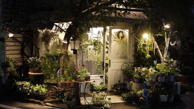 仕事旅行社公式ブログ: 花屋さんになる旅