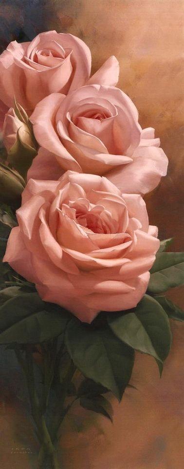 Розы картинки вертикальные с понедельника