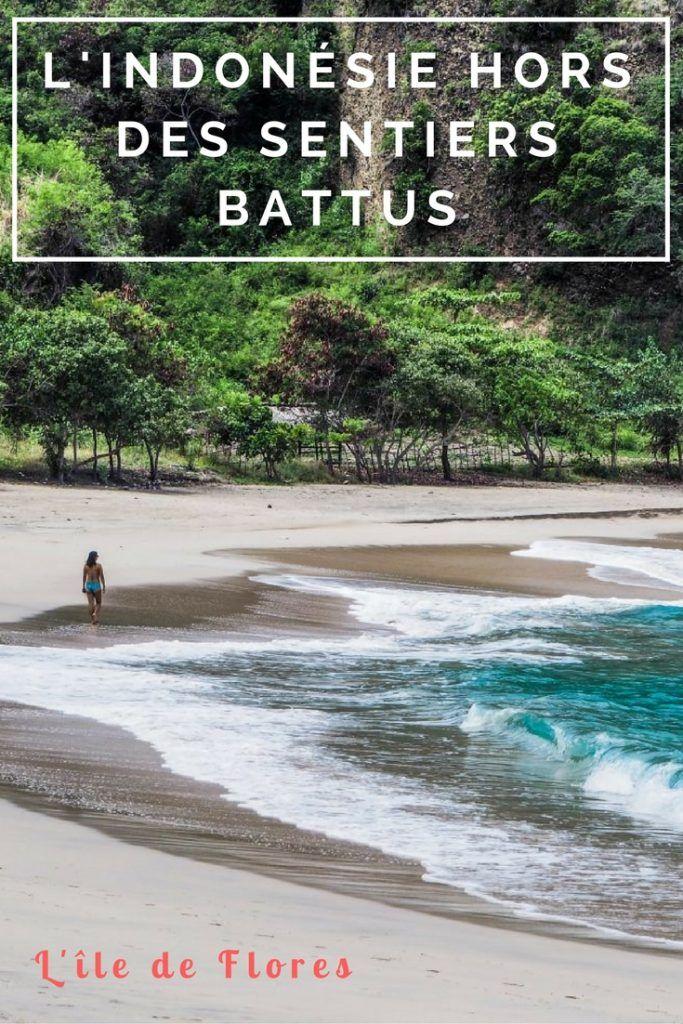 Voyager en Indonésie hors des sentiers battus: à la découvert de l'île de Flores et de Komodo loin des touristes