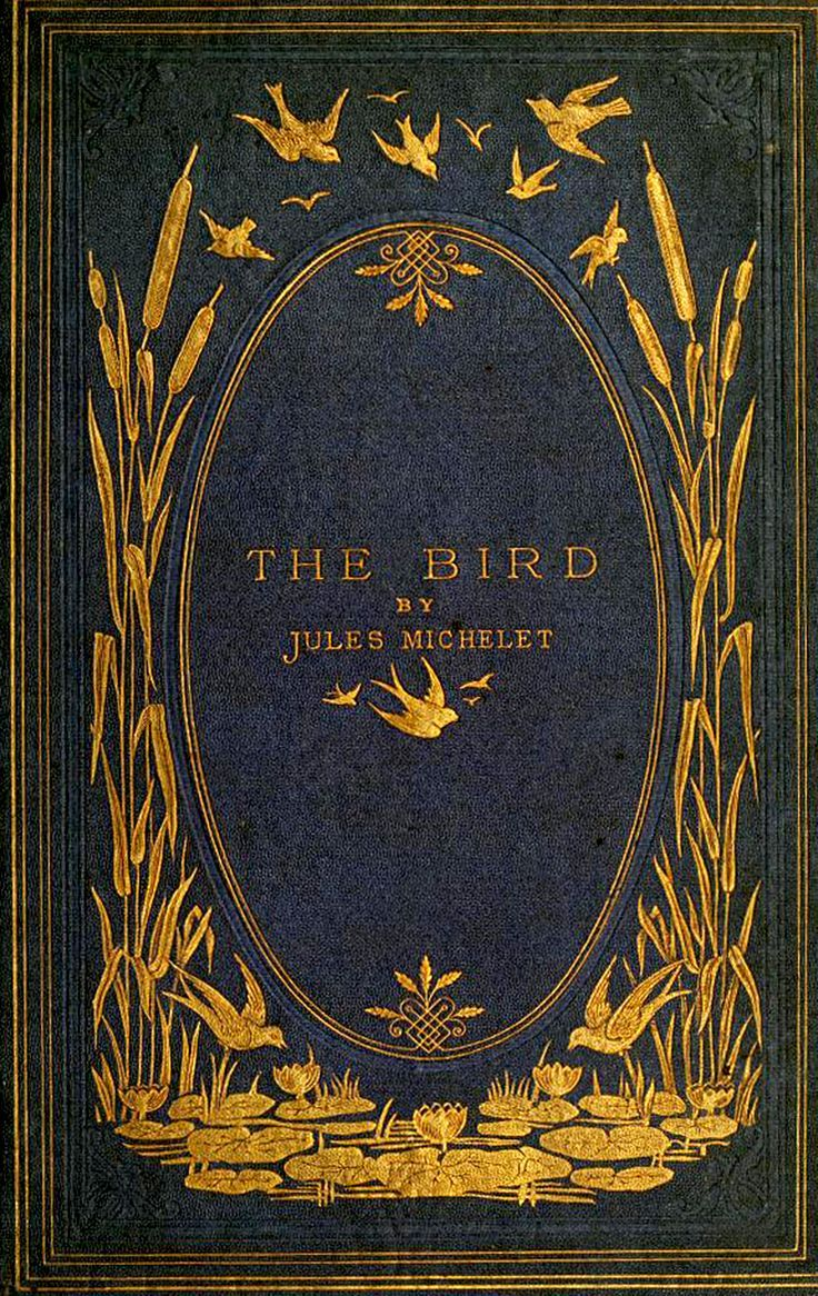 "starrydiadems: ""The Bird by Jules Michelet (1869). """