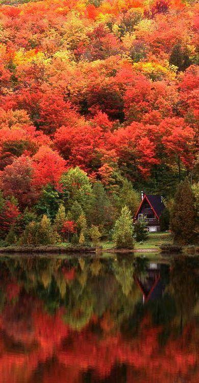 525 best Herbst Farbtyp images on Pinterest Autumn, Autumn fall - ausgefallenen mobel allan lake skulpturell