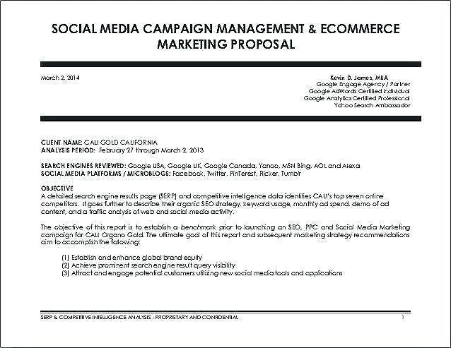 Social Media Marketing Proposal Template Fresh Seo Proposal