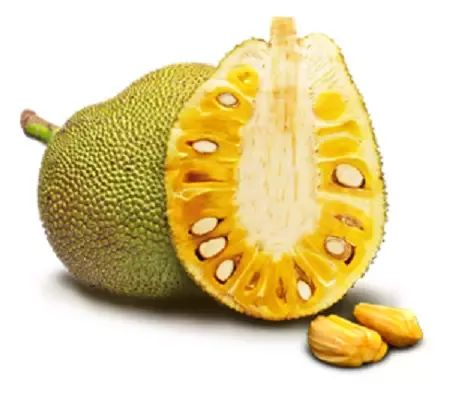 What is the difference between durian and jackfruit? - Quora This is a Jackfruit