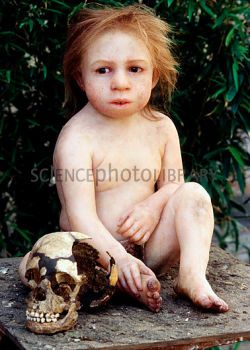 Neanderthal Baby 34 best Neanderthals, ...