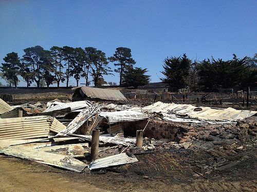 7 January 2013 - Bushfire aftermath at Dunalley, Tasmania  I was there in February and ou could feel their pain!