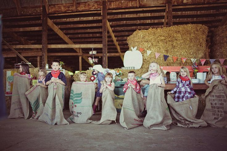 Down On The Farm, party game
